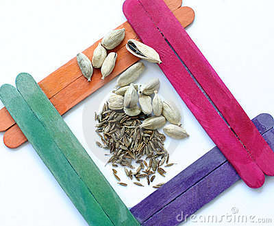 Spices - Cardamon and Cummin seeds