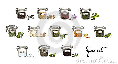 Spices in jars, big set, part 1. collection hand drawn vector illustration. Vector Illustration