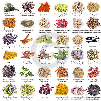 Free Spices Set Isolated On A White Background Stock Image - 50568271