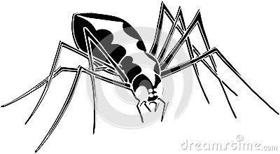 stylized Spider isolated in black and white