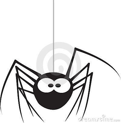 Free Spider Stock Photography - 4319702
