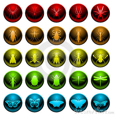 Free Spider And Insect Icon Set Royalty Free Stock Photography - 18046237