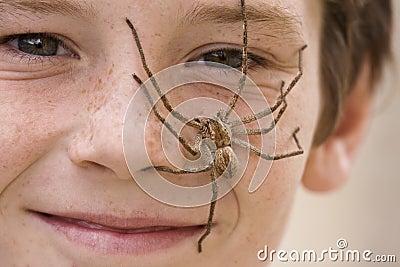 Spider Boy 2