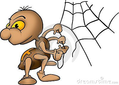 Spider and spider-web