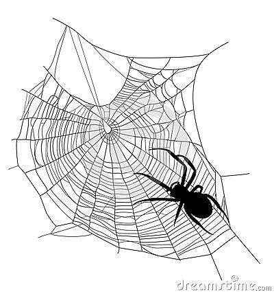Free Spider Web Stock Photos - 40730643