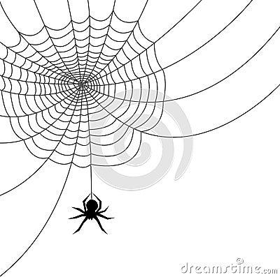 Free Spider Web/AI File Stock Photos - 1217403