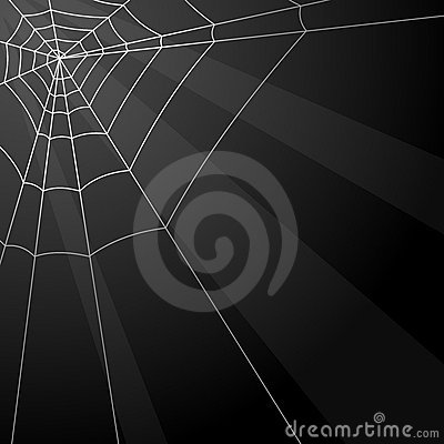 Website Background on Vector Illustration  Spider Web Background  Image  11627154