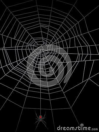 Spider Web EPS