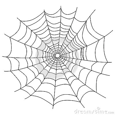 Spider web isolated on white,