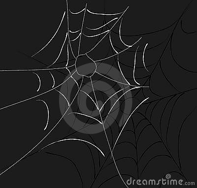 Spider Web Two Webs