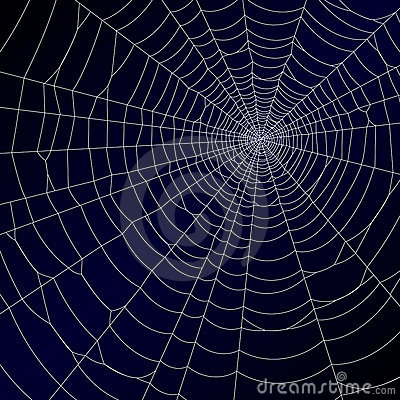 Free Spiders Web Royalty Free Stock Photo - 13569475