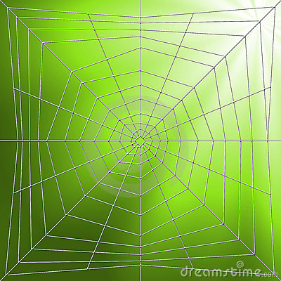 Spiderweb Illustration