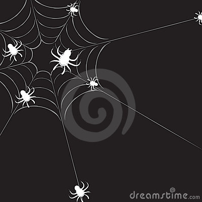 Spiderweb with spiders