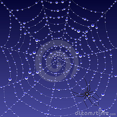 Free Spiderweb With Dew Royalty Free Stock Photo - 4026665