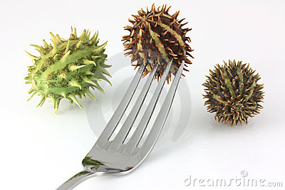 Spikey fruit on a fork