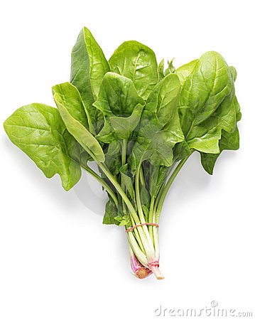 Free Spinach Royalty Free Stock Photos - 14881218