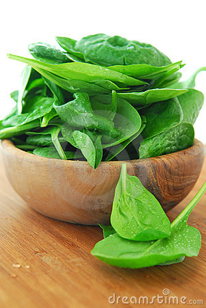 Free Spinach Royalty Free Stock Photo - 3668675