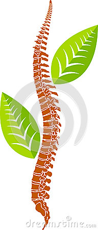 Spine leaf logo