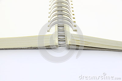 Spine of ring binder