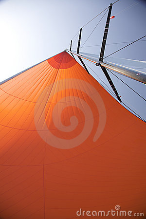 Spinnaker in the sun