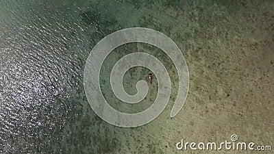 Spinnende Fliegen-wegluftgesamtlänge: Schöne junge Frauen-Schwimmen, liegend auf einer Wasser-Oberfläche in Crystal Clear Sea HD stock video