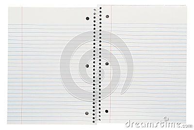 Spiral Bound Blank Paper Open Composition Notebook