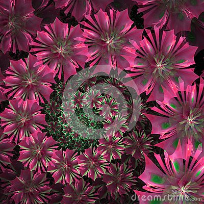 Free Spiral Flower Background. Pink Palette. Computer Generated Graph Royalty Free Stock Photos - 48931748