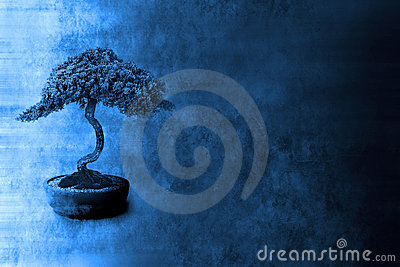 Spiritual Knowledge  Bonsai Background