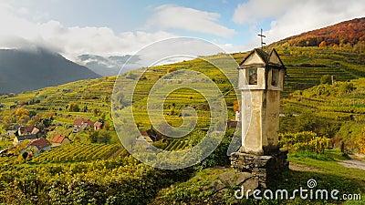 Spitz vineyards no.5