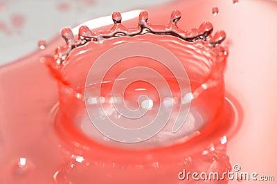 Splash of water is frozen