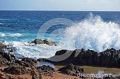 Splashing Seas