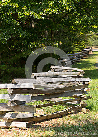 Split rail fence by edge of forest
