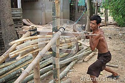 Splitting Bamboos Editorial Photo
