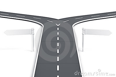 Splitting road with blank road signs
