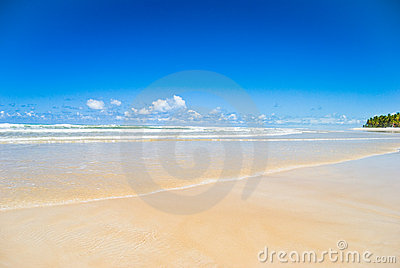 Spokojna plażowa scena