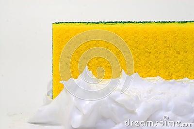 Sponge and lather