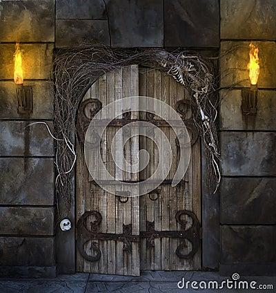 Free Spooky Door Stock Photography - 16804632