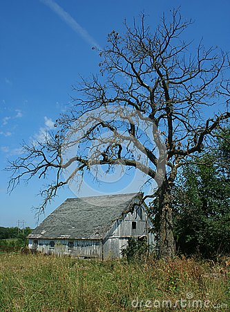 Spooky Old Barn