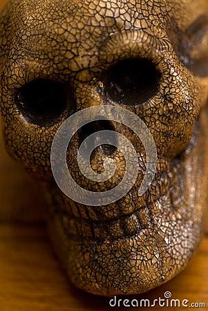 Spooky skull head