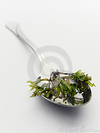 Spoon with seaweed