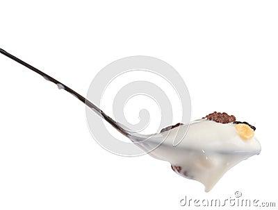 Spoon of yogurt