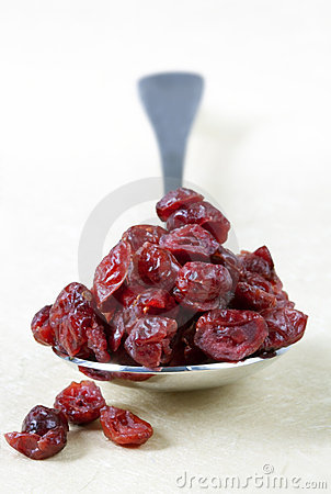 Spoonful of Dried Cranberries