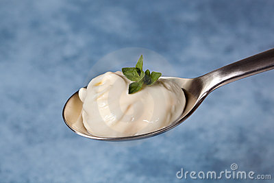 Spoonful of Herbed Mayonnaise