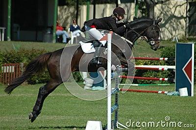 Sport equestrian