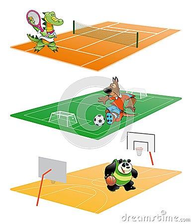 Sport et animal