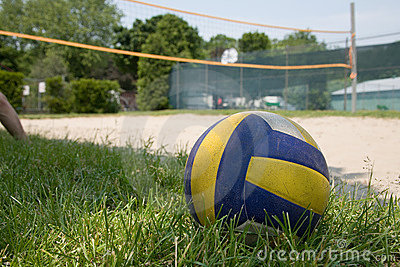 Sport volleyball on grass
