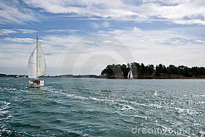 Sportive sailboat in the  Ocean
