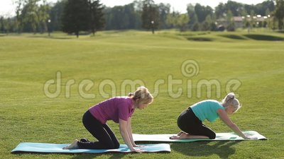 Sporty women performing yoga exercises outdoors stock footage