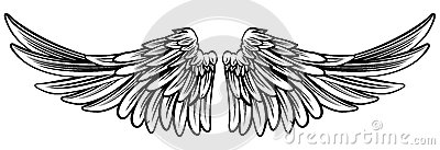 Spread Pair of Angel or Eagle Wings Vector Illustration