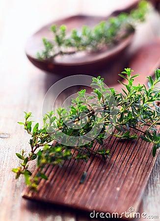 Free Sprig Of Fresh Thyme Royalty Free Stock Photo - 29712495